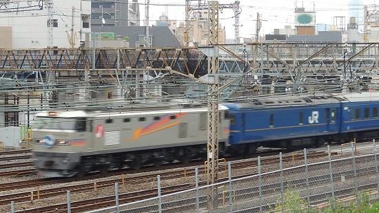 Dscn7504a.jpg