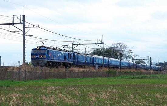 IMGP3549s.jpg