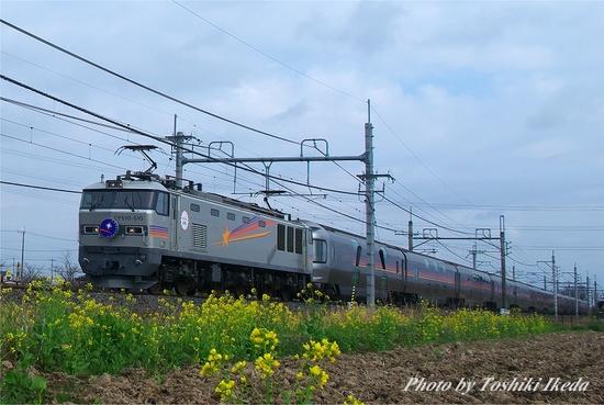IMGP6503s.jpg