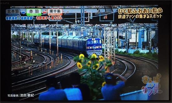 IMG_3495a.jpg