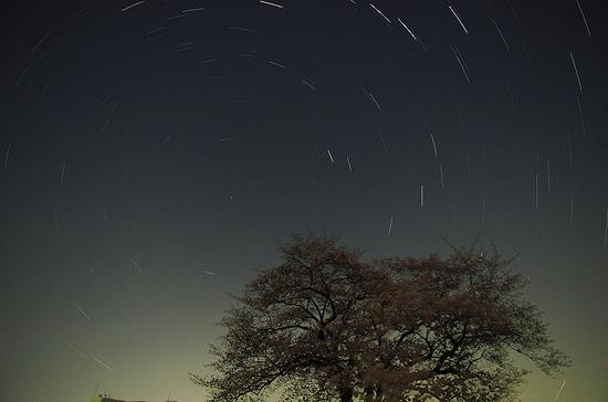 桜と星の軌跡aa.jpg